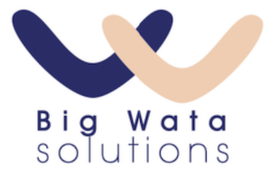 BIG WATA SOLUTIONS
